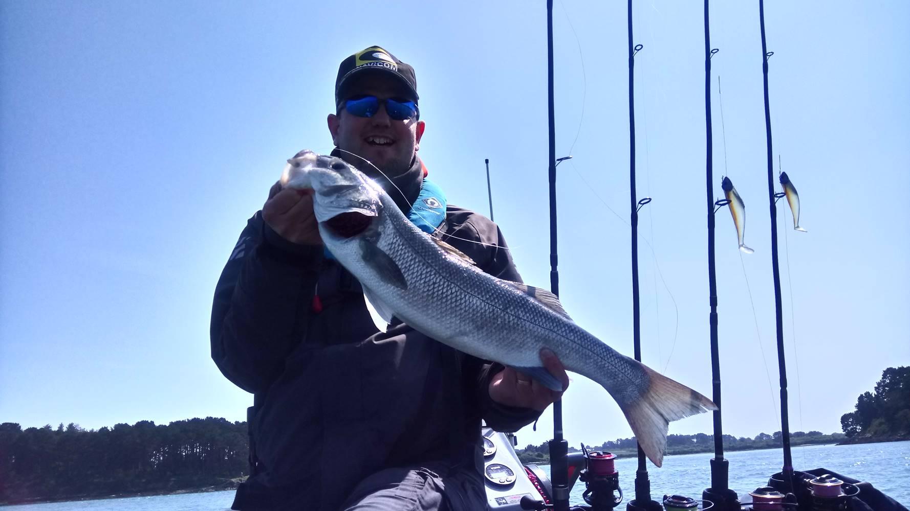 Sortie pêche dans le Golfe du Morbihan-  Guide de pêche en mer- Bar - dorade royale ©