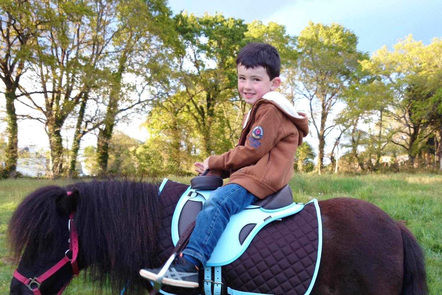 camping avec poneys ©