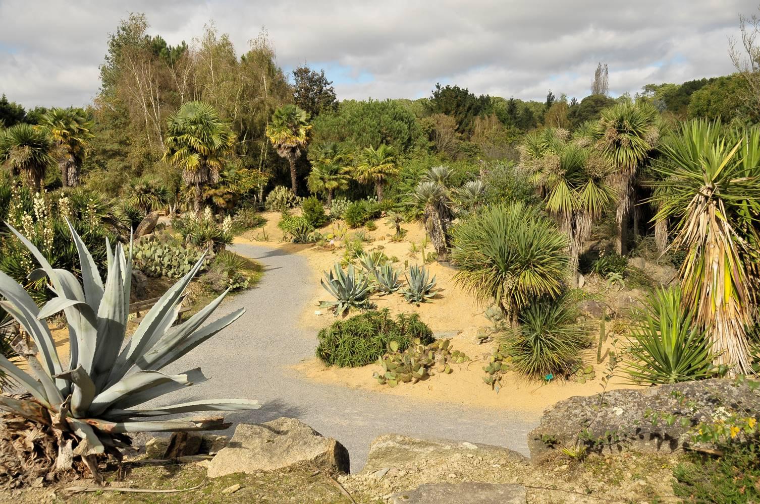 jardin mexi3 ©