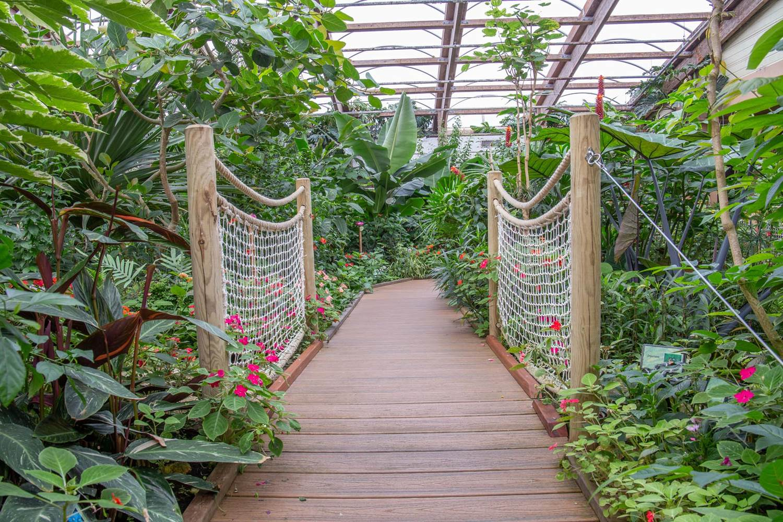 jardin-aux-papillons-morbihan-bretagne-sud-31 © © Magalie BARRE