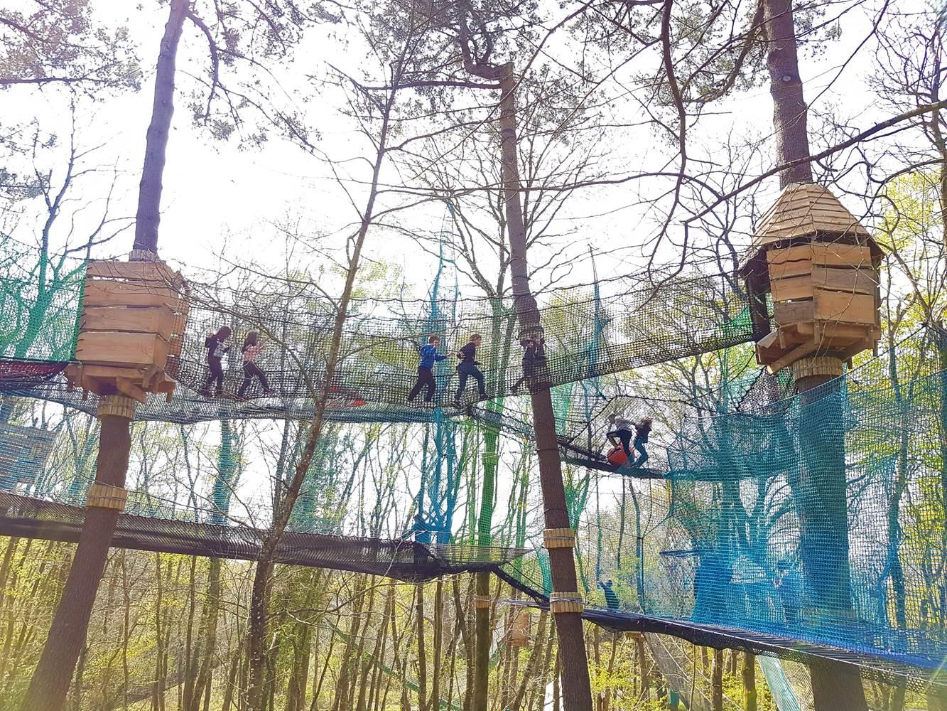 land aux lutins un labyrinthe dans les arbres ©