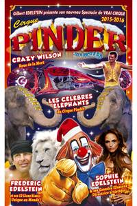 Cirque Pinder - Auray