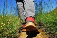 Les randonnées du lundi à Pluvigner - le 17 août