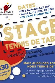 Stage été Tennis de Table