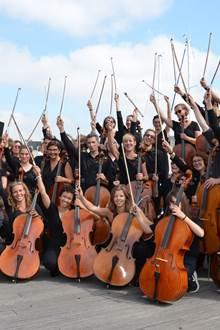 Concert d'ensemble de violoncelles
