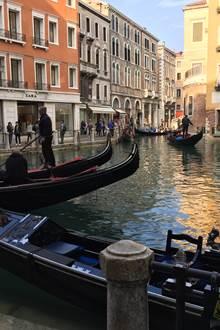 Animation iloise - Thème Venise