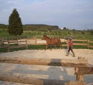 Balade à cheval avec l'association Lung-Ta