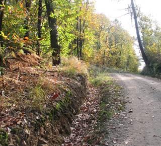 Circuit de la Noë des Dames - Larré (10 km)