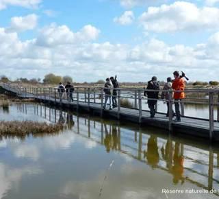 Réserve Naturelle des Marais de Séné