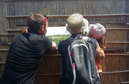 Balade dessinée dans les marais de Suscinio