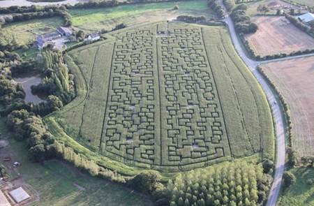 Labyrinthe Géant de Maïs